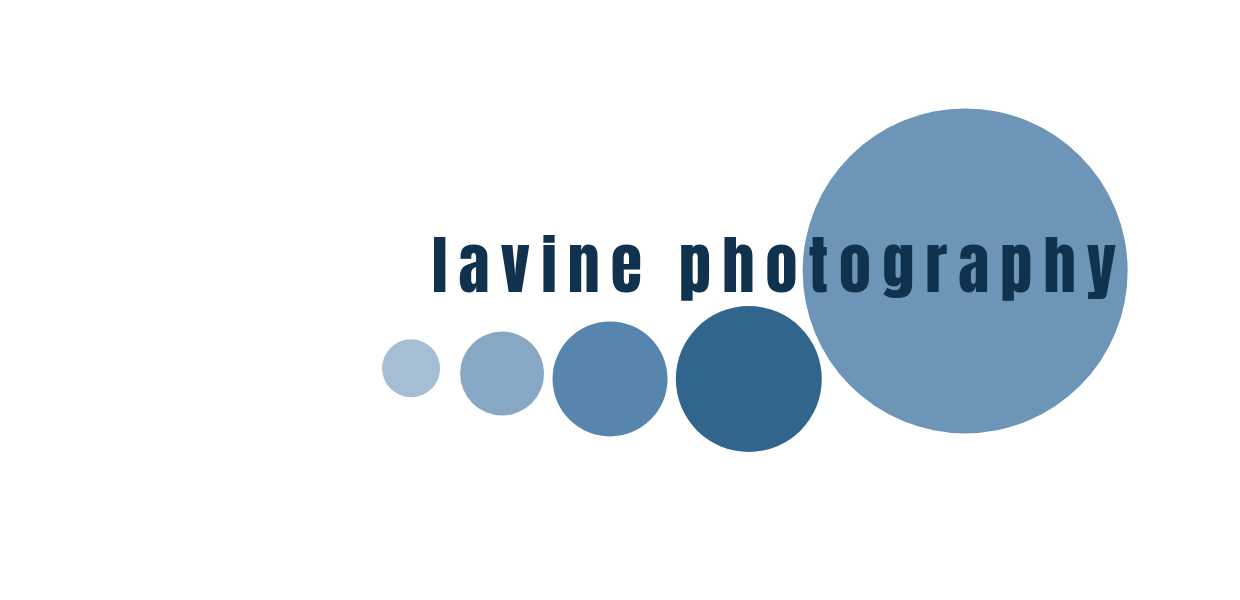 Yve Lavine Photography | Photography for Business